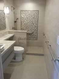marvelous moen kingsley in bathroom transitional with diity shower next to ada compliant