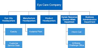 About Hoya Vision Care Company Hoya Vision Care Company