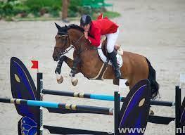 Jos Verlooy senior overleden - Horses.nl