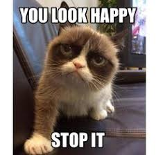 Grumpy cat finds his dad… | Grumpy Cat, Dads and Cat via Relatably.com
