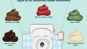 normal bowel movement