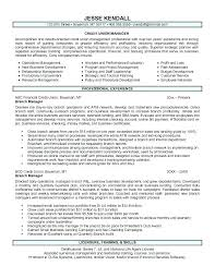 It Employee Resume Employee Relation Manager Resume Assistant Branch