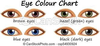 Different Shades Of Blue Eyes Chart Human Eyes With Different Colors