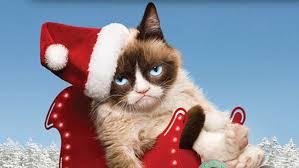 grumpy cat christmas hat. Delighful Grumpy Grumpy Cat Inside Christmas Hat PledgeMusic
