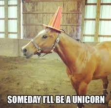 unicorn meme | Tumblr via Relatably.com