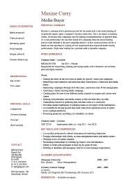 Media buyer resume