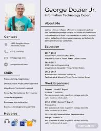 It Resume Formats Free It Resume Format Word Psd Indesign Apple Pages
