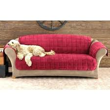 Top furniture covers sofas Cushion Best Couch Protector Cat Proof Couch Cover Dog Cover For Couch Furniture Pet Sofa Cover Lovely Ebay Best Couch Protector Best Sofa Slipcovers Best Sofa Covers Images On