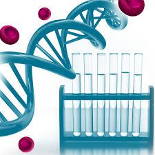 Науково дослідна діяльність ГОСУДАРСТВЕННЫЙ НАУЧНО КОНТРОЛЬНЫЙ  Науково дослідна діяльність