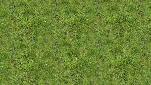 grass texture hd. Unique Texture Grass Texture And Hd U