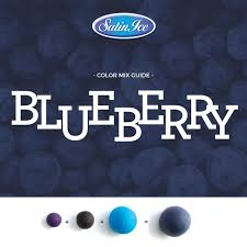 Blueberry Color Mixing Chart Satin Ice Fondant Color