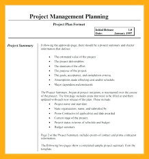 Transition Plan Template Free Word Excel Documents In Account ...