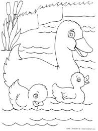 Small Picture Duck with Ducklings Coloring Page KinderArt