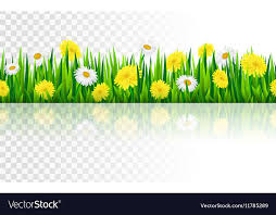 grass and flowers border.  Flowers Seamless Border With Grass And Flowers Vector Image With Grass And Flowers Border W