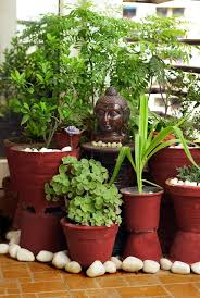Small Picture Best balcony garden ideas pune On Home design make easy with