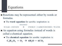 23 equations reactions