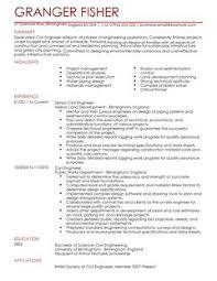 Resume Sample    Software Engineering Professional Resume      resume format