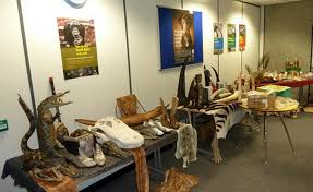 wikileaks office. These Contraband Wildlife Trade Items Were Seized By The UK\u0027s Border Force. Photo: UK Wikileaks Office S