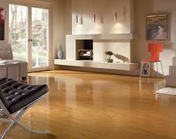 Best Vinyl Plank Flooring For Kitchen Armstrong Exquisite Vinyl Plank Flooring Reviews All About