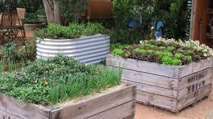 raised vegetable garden and how raising