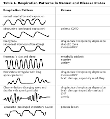 Abnormal Breathing Patterns Inspiration Types Of Breathing Patterns Holaklonecco