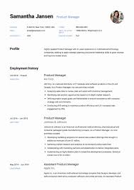 Management Resume Keywords Inspirational Funky Product Manager