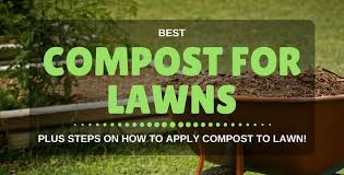 Image For Lawns Best Compost For Lawn Seeding How To Apply Compost To Lawn
