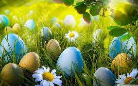 Easter Egg Hunt 4k Hd Desktop Wallpaper For 4k Ultra Hd