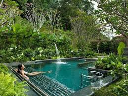 Dream garden - little pool in lush tropical garden setting.. . #tropical In