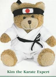 Care Bear Magic Night Light Bear Kim Karate Bear Www Golden Rains Com