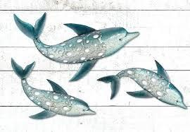 amazing fish wall art swimming dolphin seaside decor metal australia  on metal fish wall art australia with amazing fish wall art home metal beach ocean driftwood