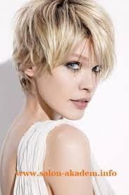Hairstyle Short Women short haircuts 2017 trends short cuts pinterest hairstyles 6427 by stevesalt.us
