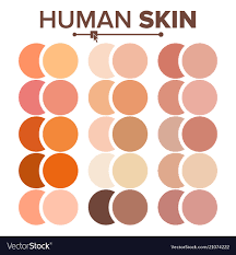 Skin Human Various Body Tones Chart