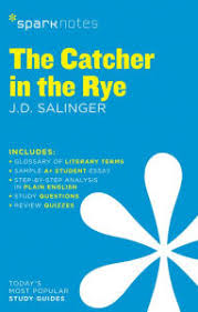 the catcher in the rye themes the catcher in the rye literature guide series