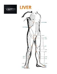 Deadly Pressure Points Discover The Top 5 Death Touch