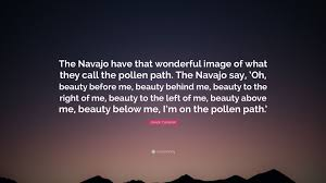 Image result for pollen path navajo