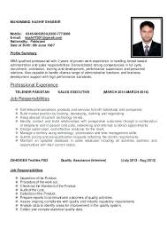 Sales Executive Job Description Executive Sales Resume Resume Sample Senior Sales Executive Page 1