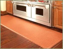 washable kitchen rugs. Contemporary Washable Kitchen Rugs Washable Throw Lovely Machine    For Washable Kitchen Rugs C