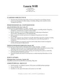 Resume Introduction Examples Customer Service Resumes Objectives For