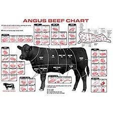 Cow Meat Chart Beef Cuts Of Meat Butcher Chart Poster 40 Inch X 24 Inch 21 Inch X 13 Inch