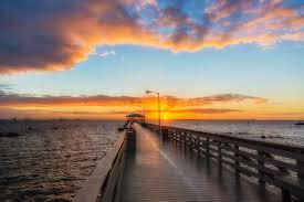 Ballast Point Park Tampa Skyline And Sunrise From Ballast Point Park Matthew