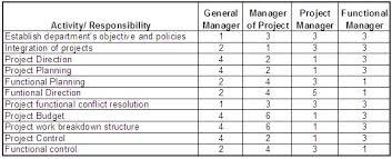 Project Management Task Chart Project Management Matrix Responsibility Chart Linear