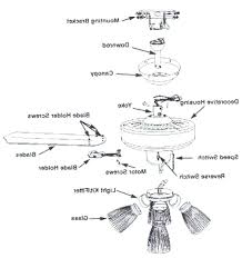 3 speed fan switch wiring diagram in addition to 3 way ceiling fan ceiling fan 3 way switch wiring diagram 3 speed fan switch wiring diagram in addition to 3 way ceiling fan switch hunter ceiling