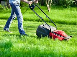 The 5 Best Electric Lawn Mowers for 2021 - LeafScore