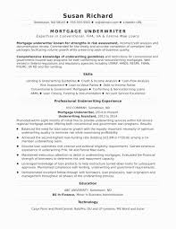 Business Analyst Resume Examples Lovely Sample Business Analyst