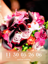 wedding countdown on the app store Wedding Countdown Photos Wedding Countdown Photos #49 wedding countdown images