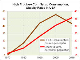 high fructose corn syrup and obesity essay high fructose corn syrup and obesity essay