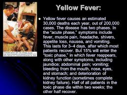 Image result for Today, a vaccine prevents yellow fever in much of the world, though 20,000 people still die every year from the disease.