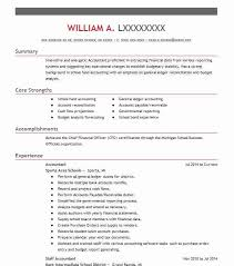 Best Accountant Resume Example | Livecareer