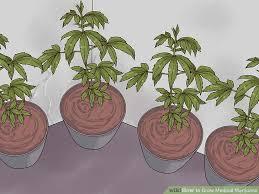 image titled grow medical step 15